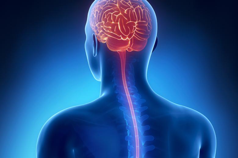 Brain & Spinal Injuries